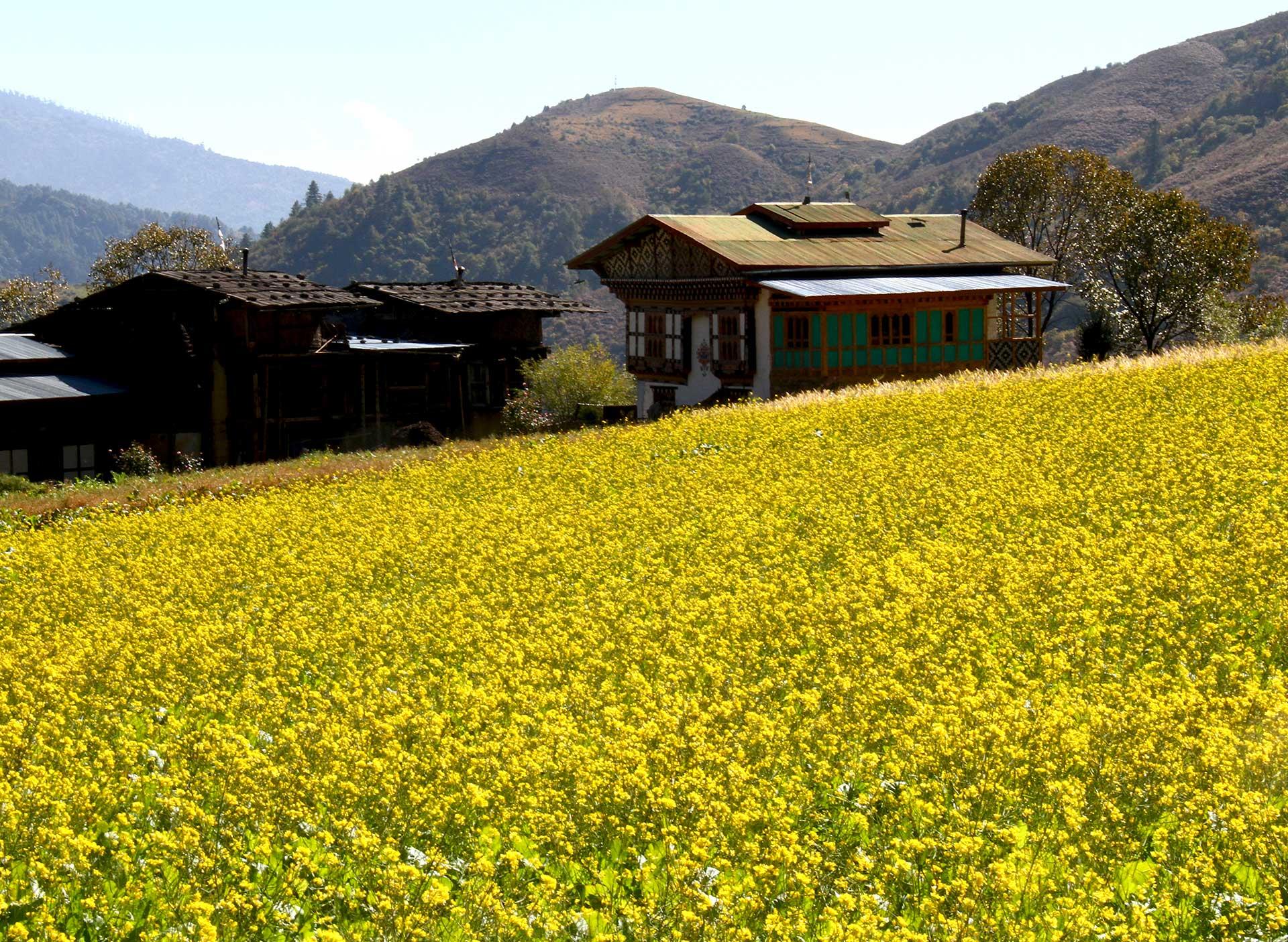 Bhutan-Heartland-Tour